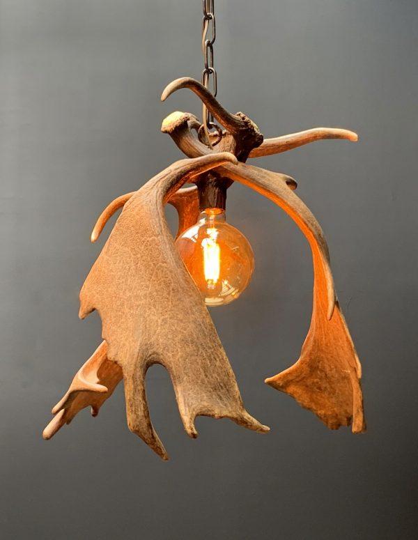 Moderne geweilamp van damhertgeweien XL