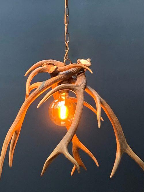 Moderne hanglamp van edelhert gewei