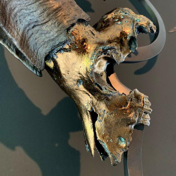 Steenbokschedels op consolle