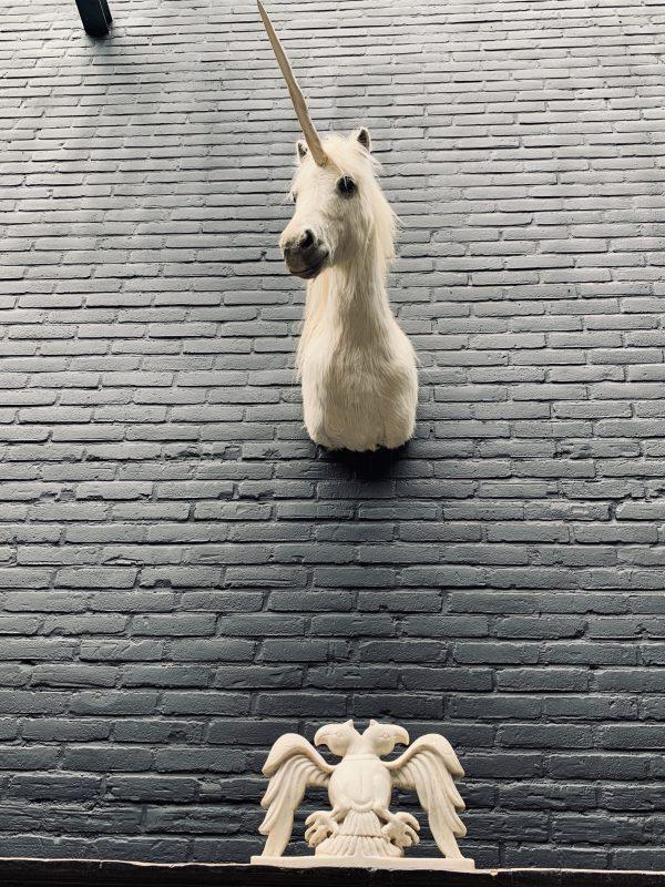Opgezet hoofd van een eenhoorn