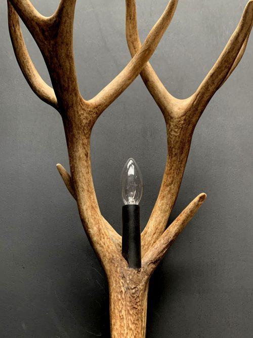 Geweilamp, Wandlamp van edelhert geweien