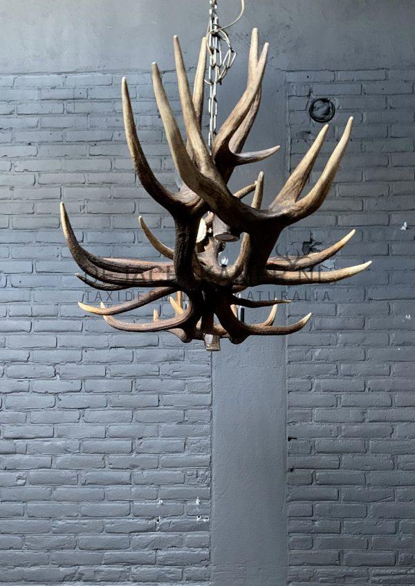 Gewei hanglamp kroonluchter XL met 6-lichten en 2 spots