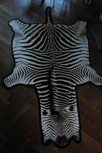 Zebrahuid met zwart vilt