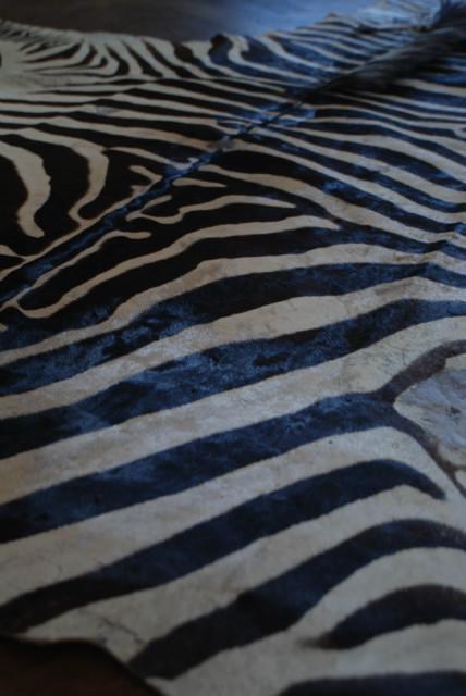 Mooie oude zebrahuid in nieuwstaat. Zebravel.