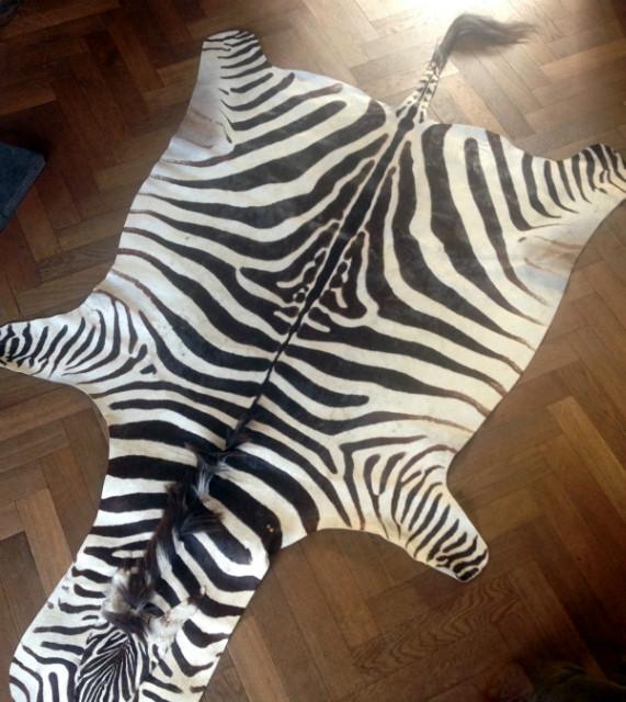 Gelooide huid van een zebra.