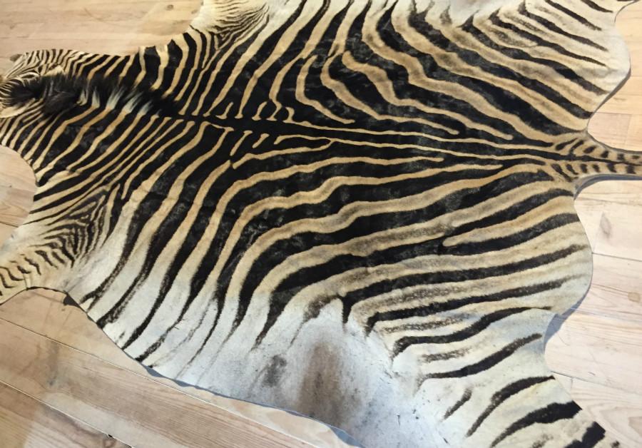Nieuwe zacht gelooide zebrahuid