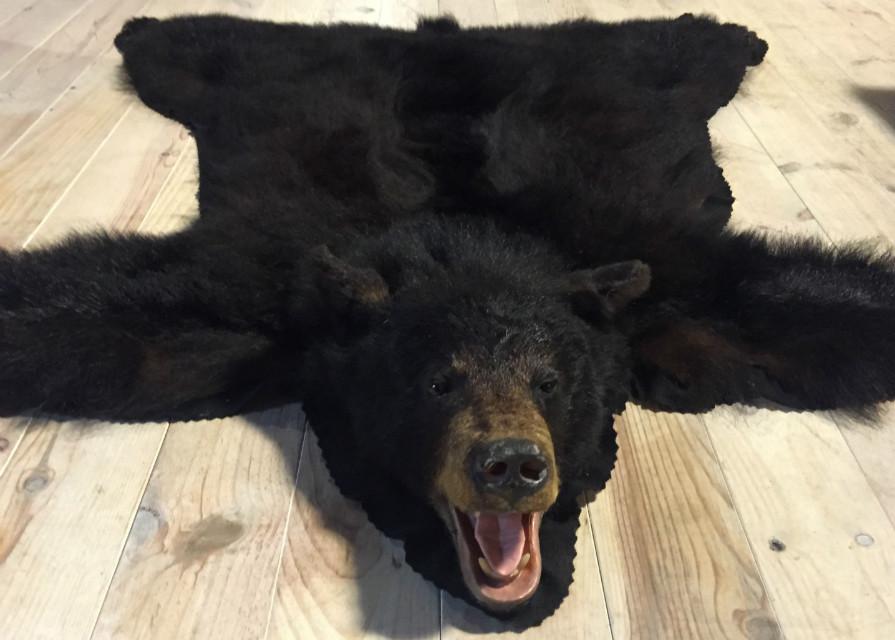 Mooie huid van een zwarte beer
