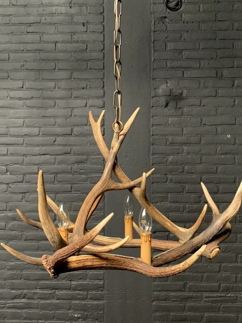 Hanging lamp of antlers