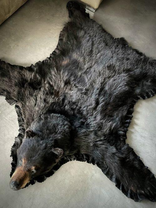 Fell eines Schwarzbären XL