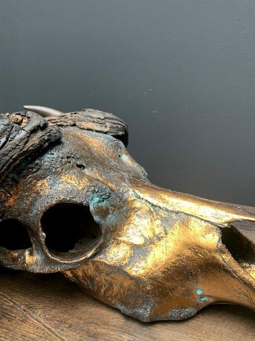 Bijzondere hoogwaardige gemetalliseerde (brons) schedel van een Kaffer buffel