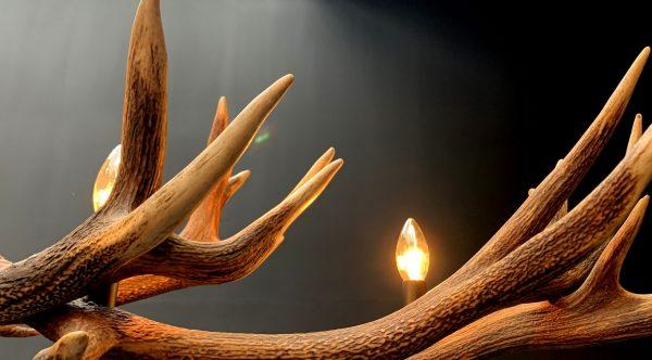 Langwerpige hanglamp van edelhert gewei, geweilamp
