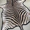 Prachtige exclusieve zacht gelooide huid van een zebra