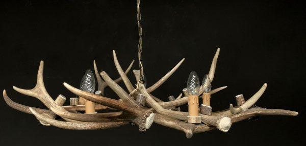 Gewei hanglamp gemaakt van het gewei van een edelhert.