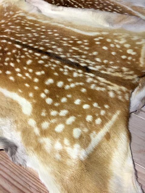 Fallow deer hides