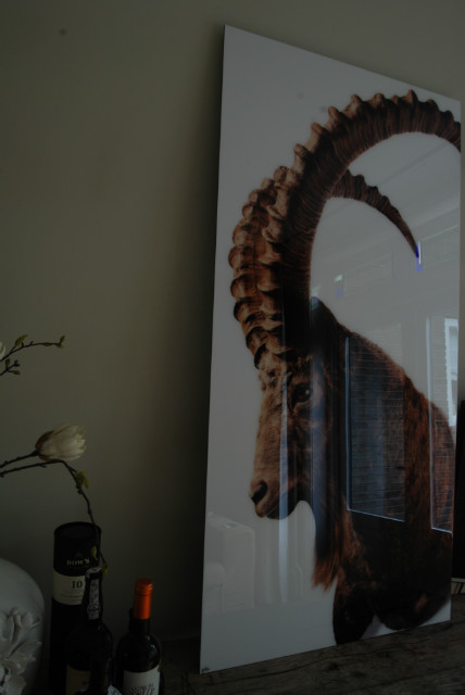 Hoge resolutie fotografische afdruk afgewerkt met glashelder epoxy