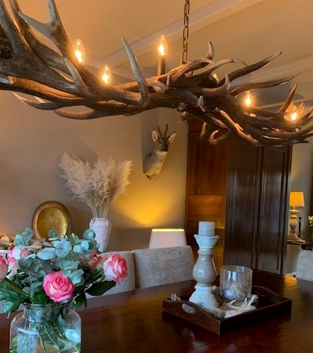 Attractive antler lamp as dining table lighting