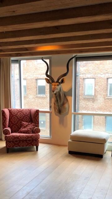 Kudu shouldermount in eetkamer
