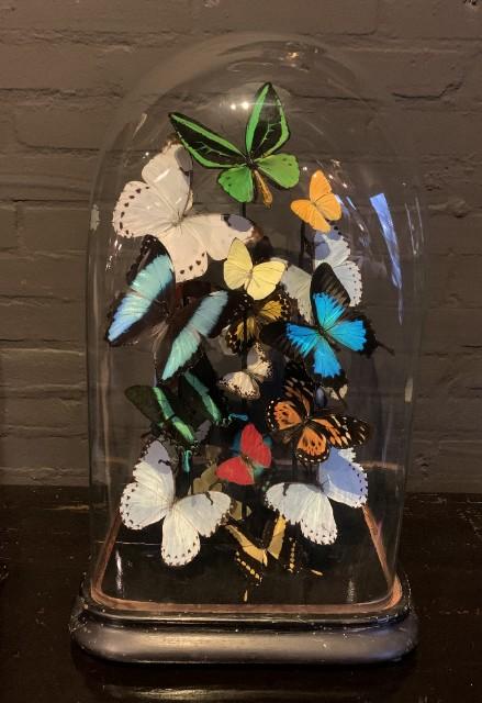 Grote stolp rijkelijk gevuld met kleurrijke vlinders