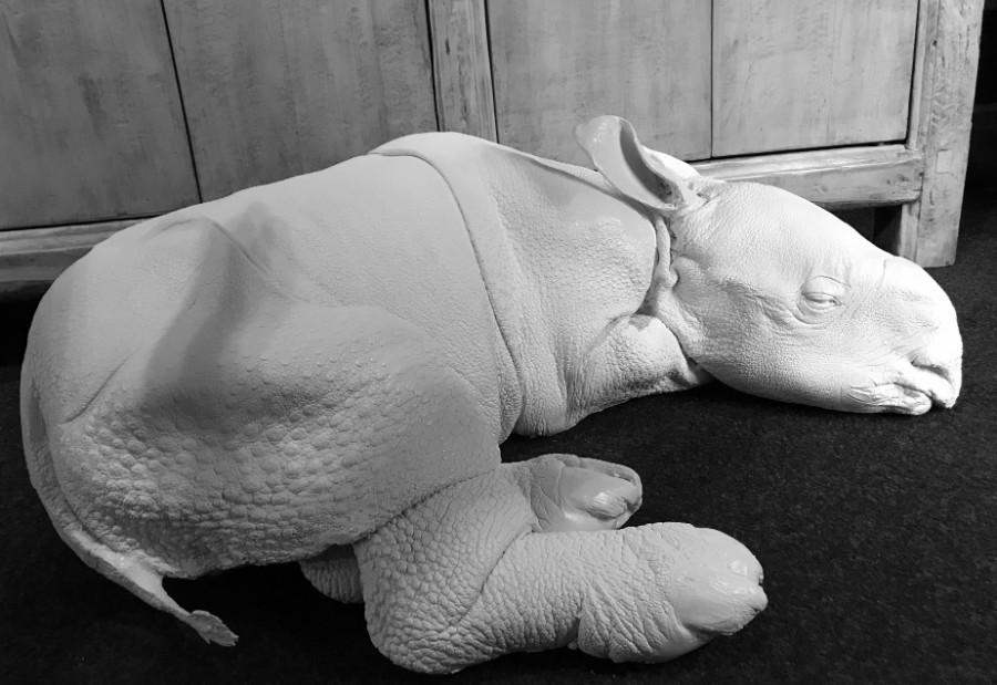 Replica van een neushoornkalf