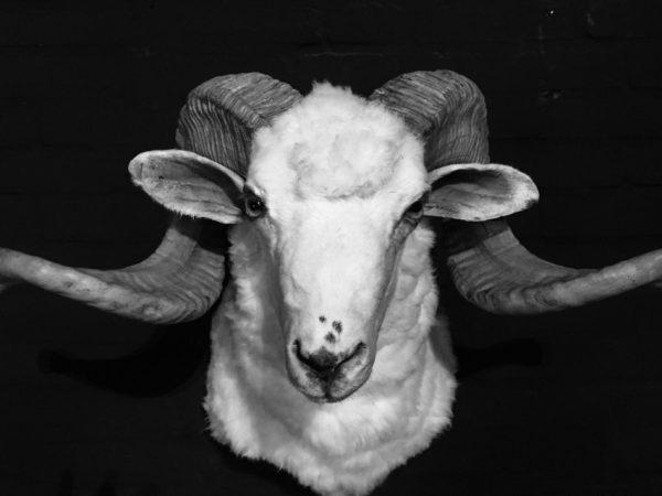 Montiert großen Ram