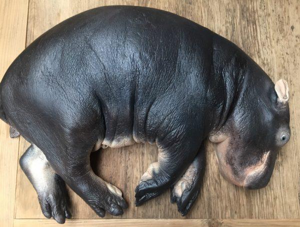 Replica van een nijlpaard kalf