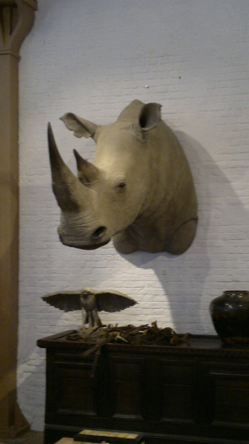 Replica van een witte neushoorn