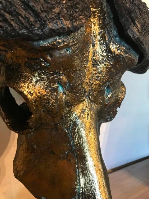 Echter metallisierter  Schädel eines Kapbüffels