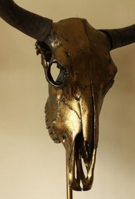 Bijzondere hoogwaardige gemetalliseerde (brons) schedel van een yak