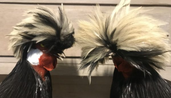 Special stuffed crested fowl