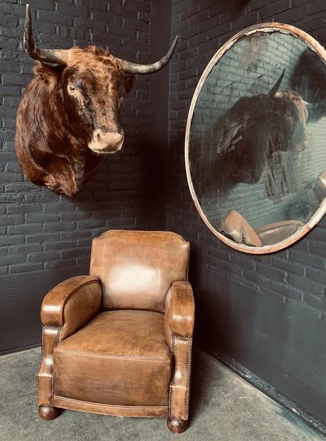 Stuffed head of a Spanish fighting bull