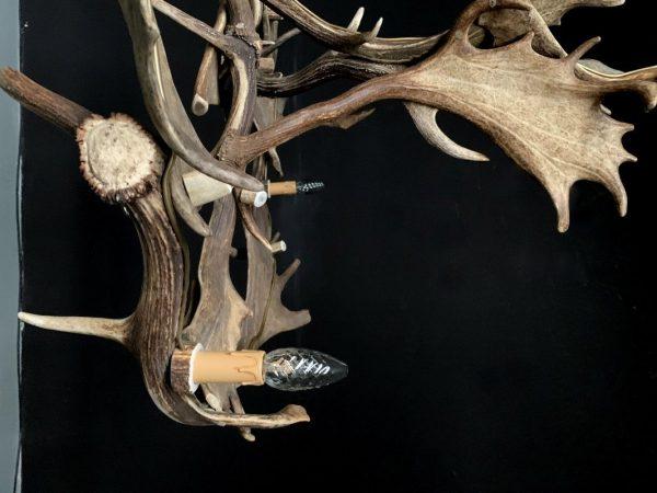 Prachtige gewei kroonluchter gemaakt van de geweien van een damhert.