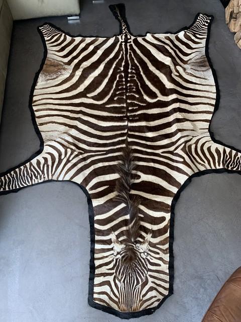 Vintage zebraskin with velvet layer