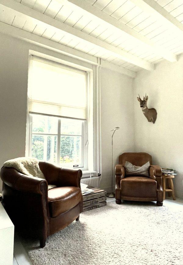 Vintage clubchairs met reebok