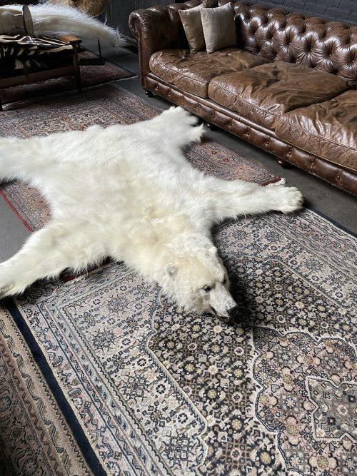 Prachtige wintervacht van een ijsbeer