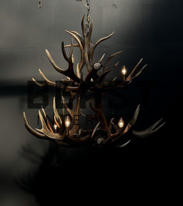 Grote gewei kroonluchter edelhert
