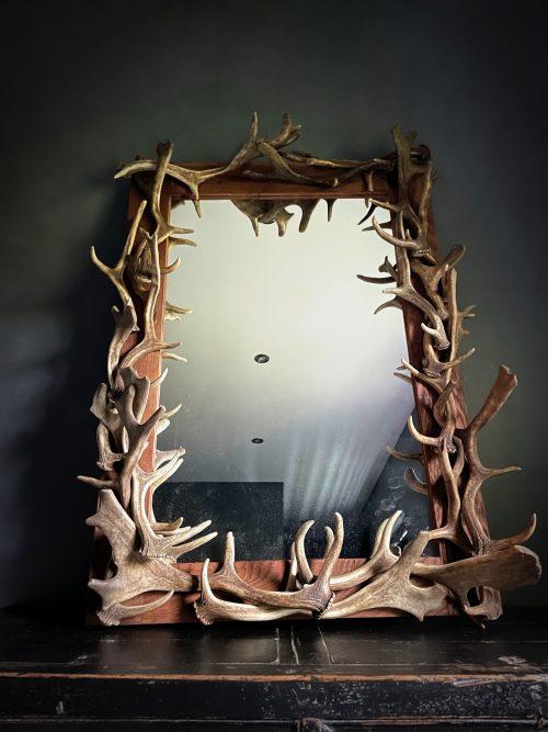 Spiegel van gewei